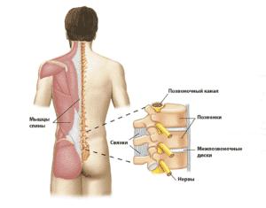 Лечение боли в пояснице в Полтаве
